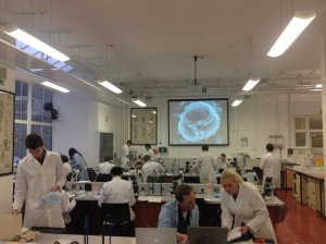 Fish_parasitology_lab