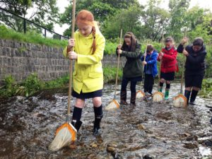 St Patricks sampling aquatic invertebrates